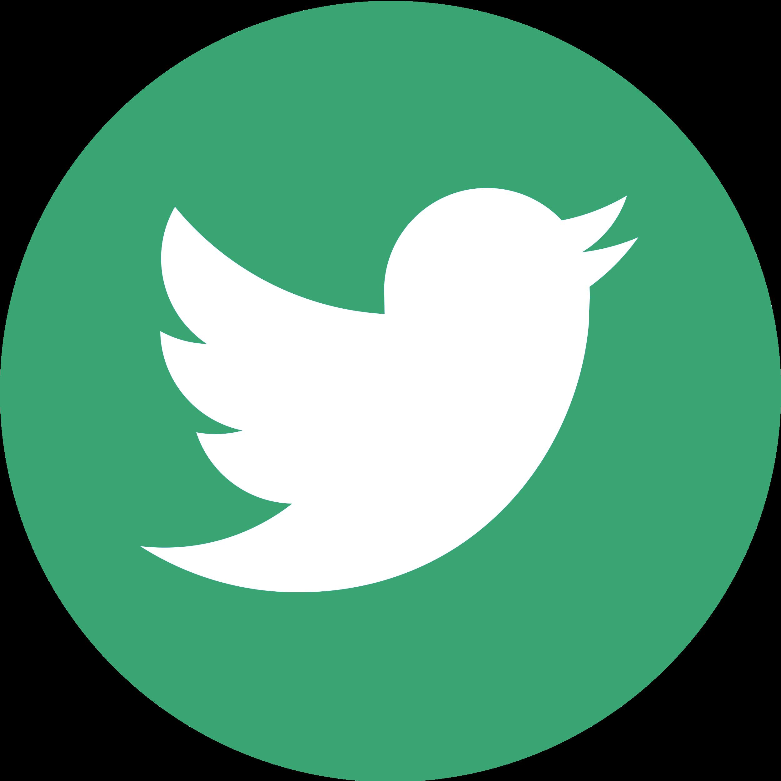 logo twitter vert